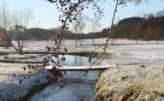 Vinter på golfbanan